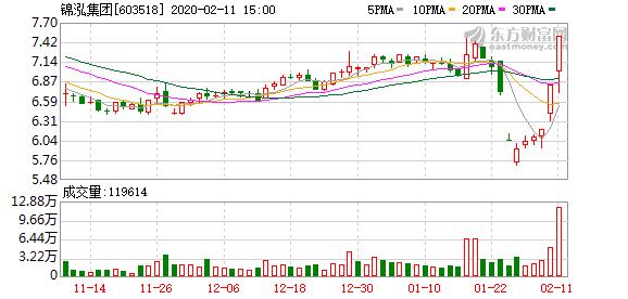锦泓集团(603518)龙虎榜数据(02-11)