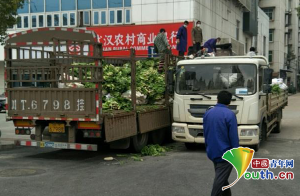 图为正在装卸捐赠蔬菜。四川农业大学供图