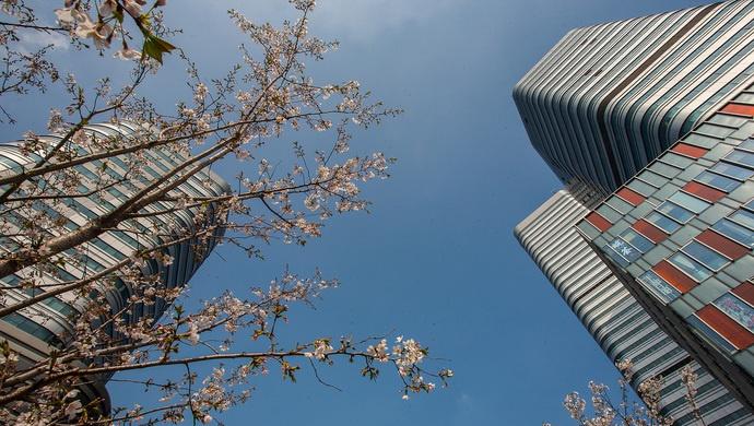 上海市政府批复虹桥主城片区单元规划,到2035年虹桥主城片区常住人口约45万人图片