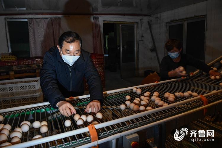 图为王堃同养殖户一起将鸡蛋装箱。