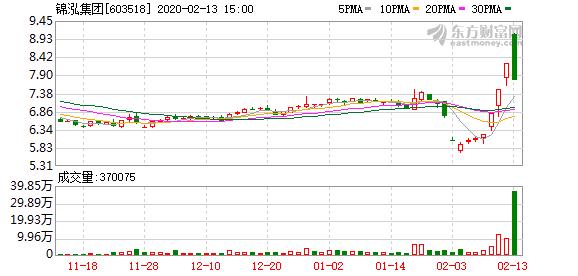 锦泓集团(603518)龙虎榜数据(02-13)