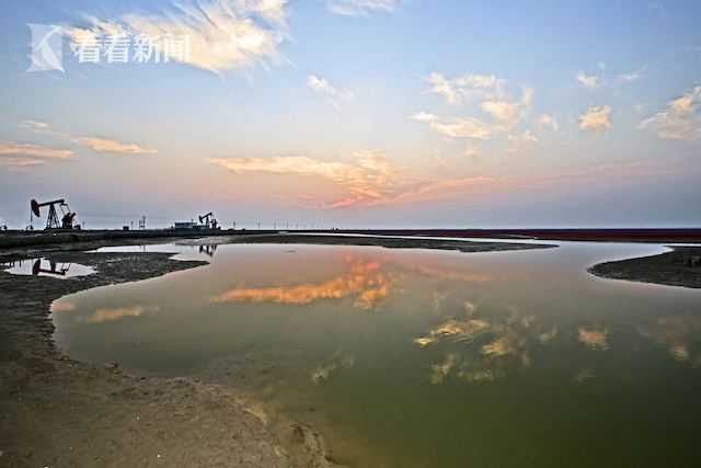 黄河三角洲应急生态补水超8000万立方米