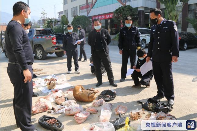 云南公安集中销毁一批野生动物死体及制品图片