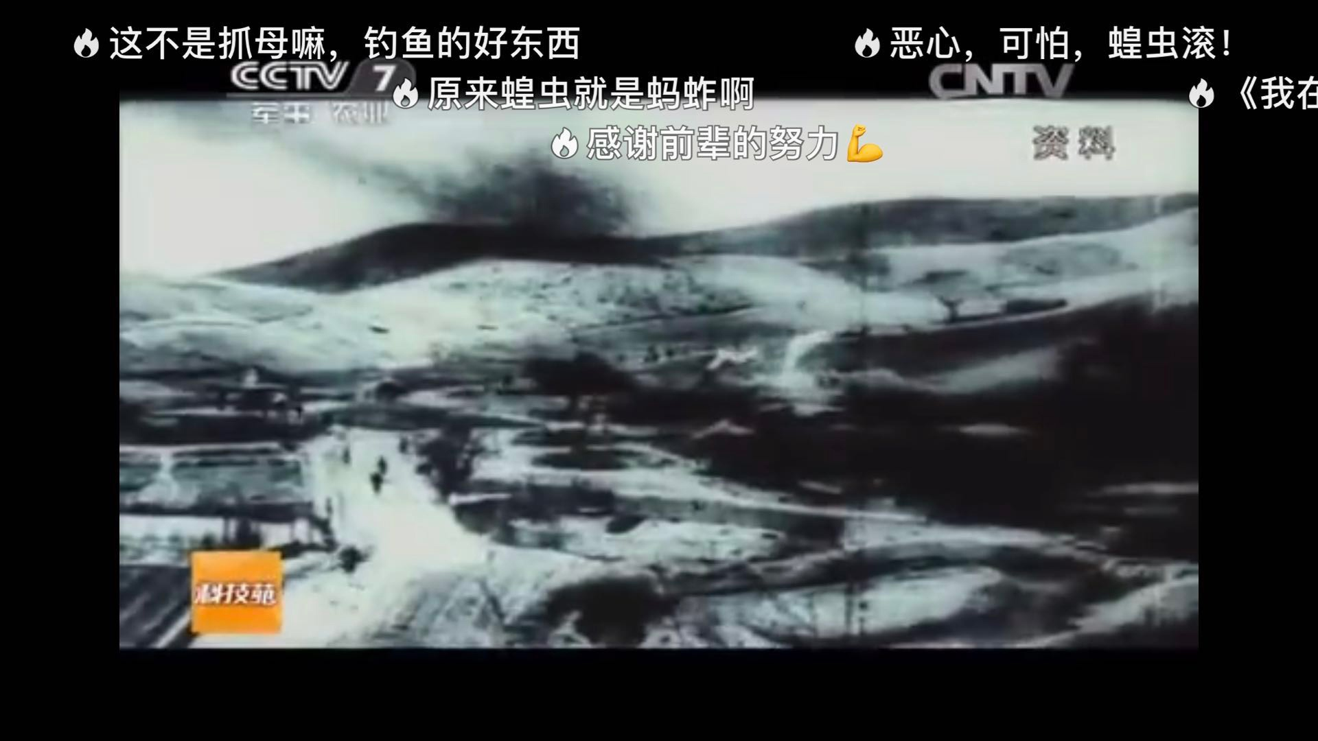 4000亿蝗虫肆虐印巴 19年前养鸡斗蝗的纪录片火了