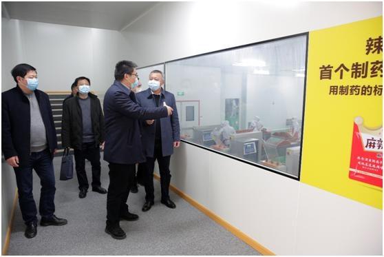 """""""硬核""""举措确保企业复工复产,平江调研高新技术产业园区"""