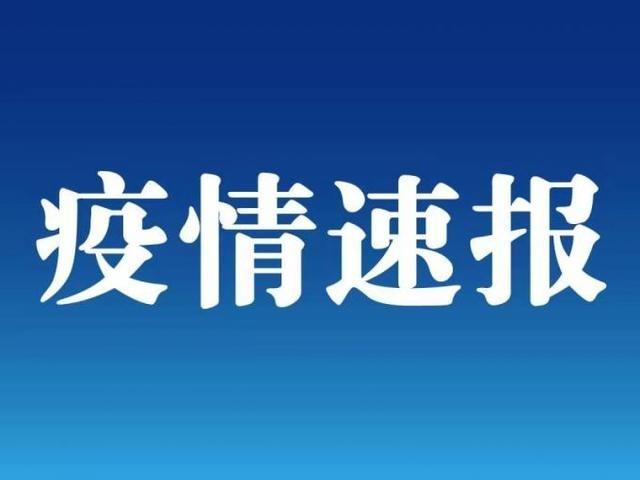 上海新增1例新冠肺炎确诊病例 为上海市常住人口