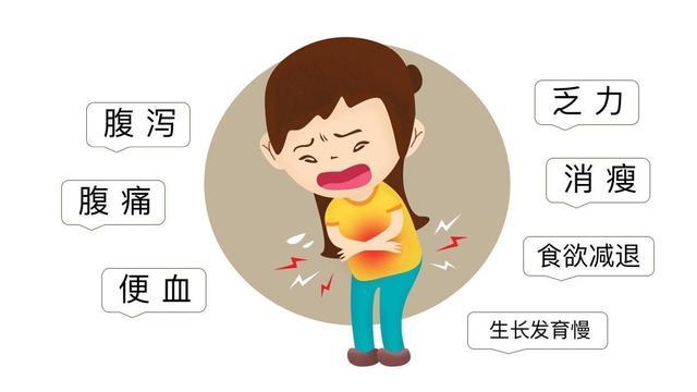 炎症性肠病中宿主与微生物群的相互作用