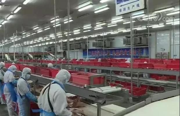 国际锐评:中国工厂机器开动了 全球产业链就稳了图片
