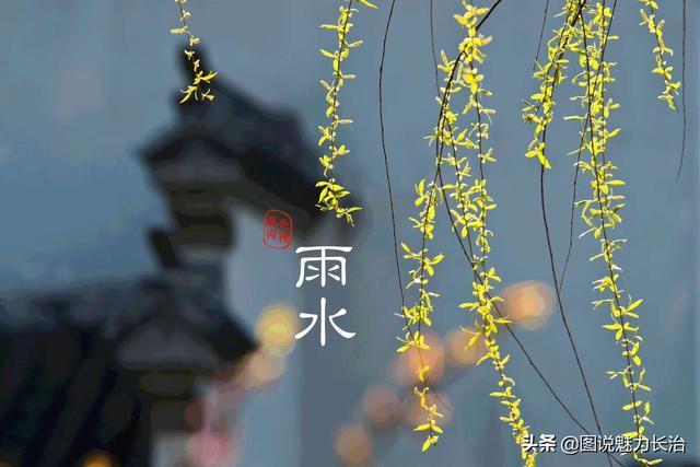 春 雨 吟文/彭淑芳