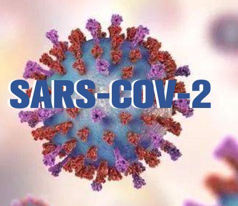 高福、石正丽等专家呼吁重新命名新冠病毒图片