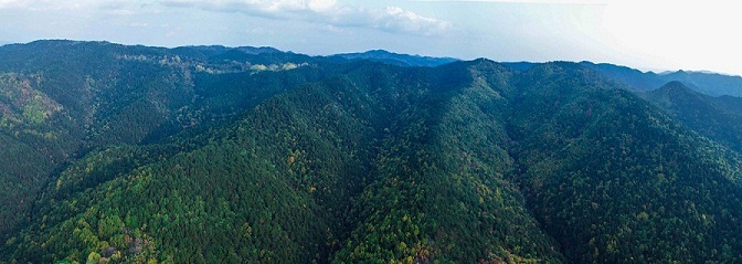 山西再添一处国家级森林公园 数量已达26个