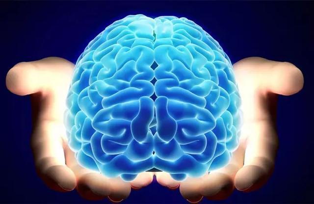 除了癫痫药物和手术,癫痫治疗还可以用生酮饮食