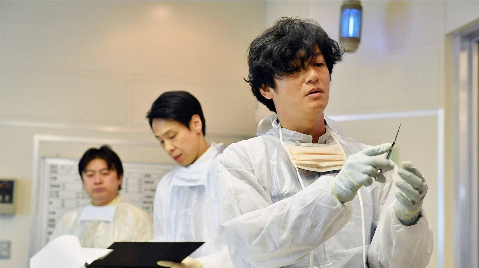 对肺炎逝者进行尸检,我们能知道些什么?