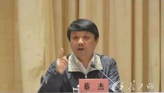 武汉市委原常委、秘书长蔡杰被开除党籍和公职图片