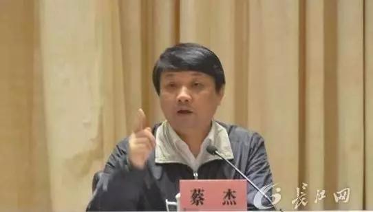 一个重量级武汉官员,被开除党籍和公职图片
