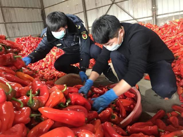 安徽和县民间自发捐赠22吨辣椒支援武汉
