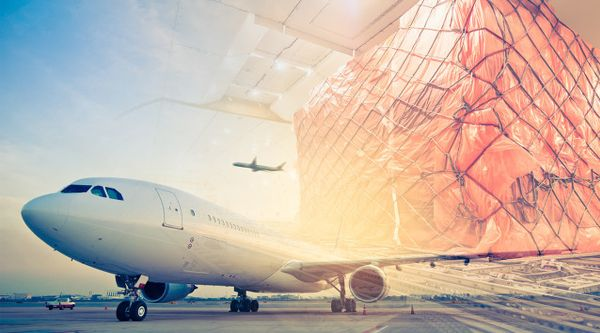 机票49块钱竟不如一棵白菜贵 航空业遭重创政府救急