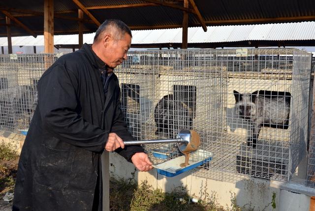 学者联名建议:全面禁止以食用为目的野生动物养殖