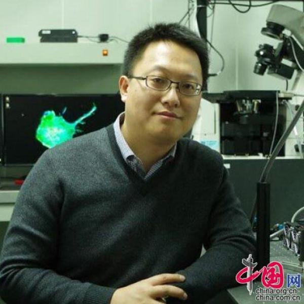 南开大学物理科学学院潘雷霆教授解读为什么康复者血浆能治疗新冠肺炎