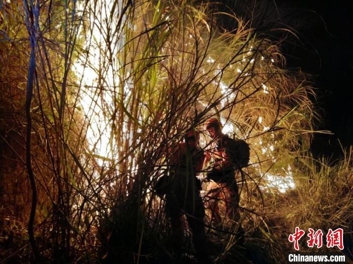 福建省莆田市突发森林火灾 54名指战员前往扑救