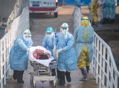 从肺炎到脏器衰竭,新冠病毒毒在哪?会否留有后遗症?