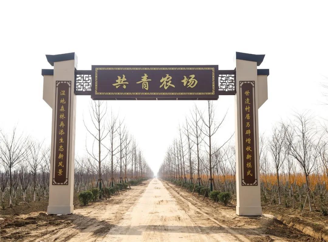 东台市弶港镇掀起水利绿化高潮