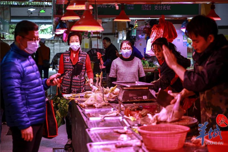 家中有粮,心中不慌!广州蔬菜日供应量6000吨,禽蛋产量一天55吨