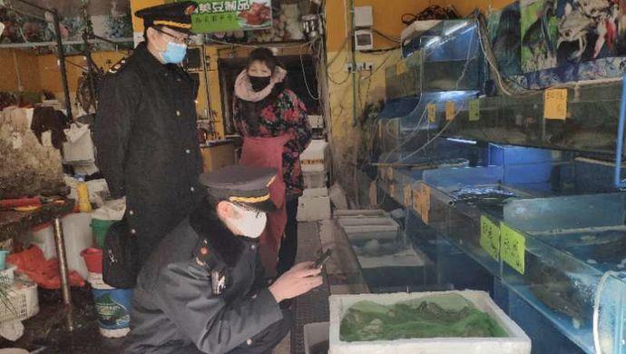 在沪贩卖重点保护野生动物黑斑娃,经营者将被从重处罚图片
