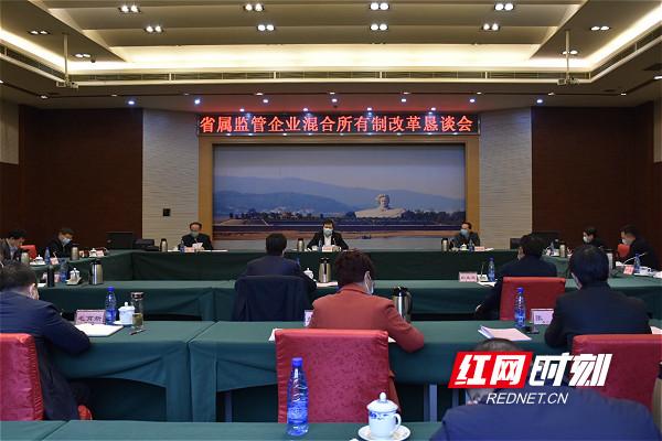 湖南省国资委召开省属监管企业混合所有制改革恳谈会