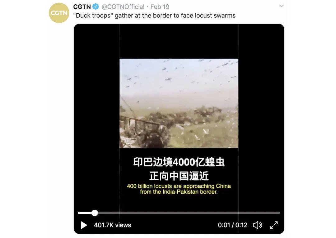 沙漠蝗虫灾害侵袭多国,除了用鸭