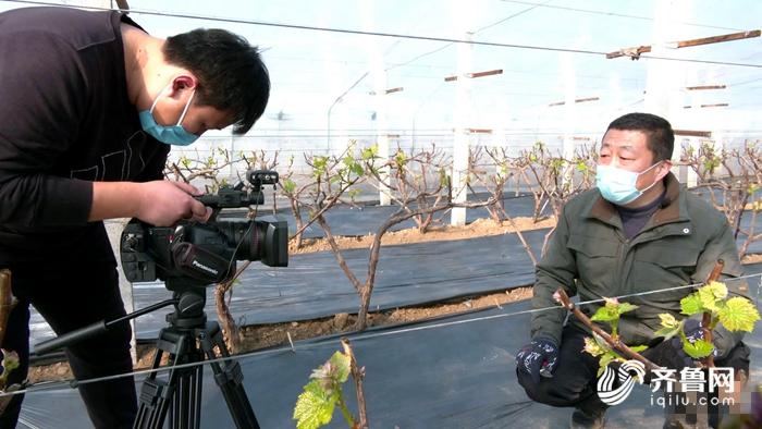 """图:聊城阳谷的农业技术员当""""主播""""开展线上""""授课"""""""