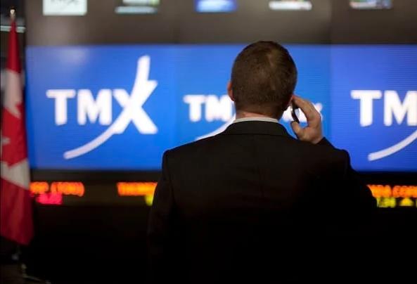"""加拿大多伦多股市宣布""""技术性停"""