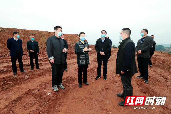 龙晓华:加快产业转型升级  推动经济持续发展