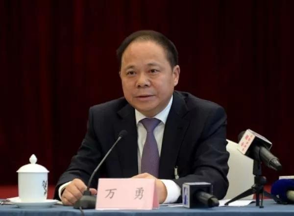 """武汉原市长万勇挂帅""""社会捐赠组组长""""图片"""