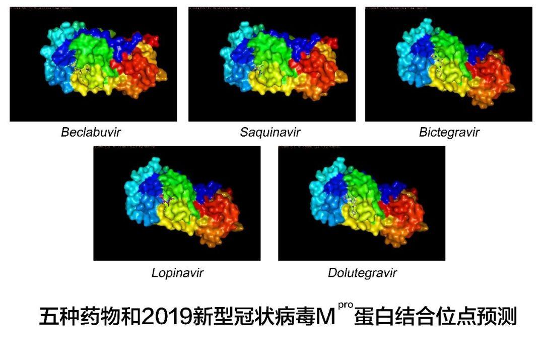 除了李兰娟团队成果 武汉还有好消息:5种药物可能有效图片