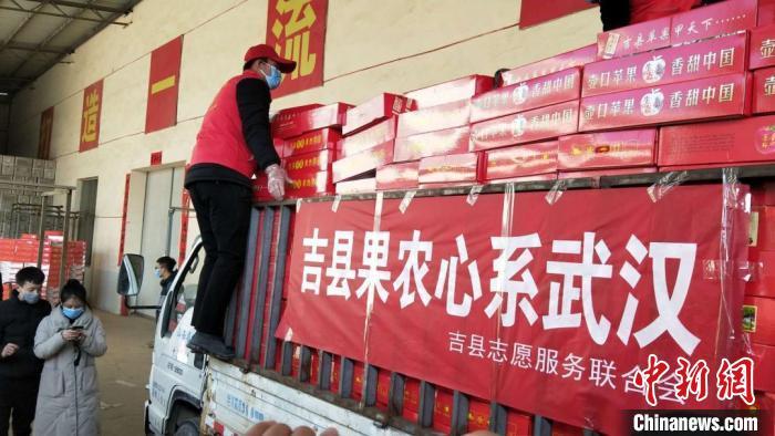 吉县果农将3万余斤一级苹果捐赠武汉医护人员。 吉县宣传部供图 摄