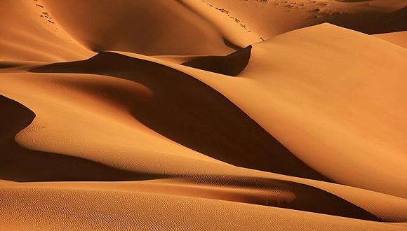 宁夏中卫:美利林区腾格里沙漠污