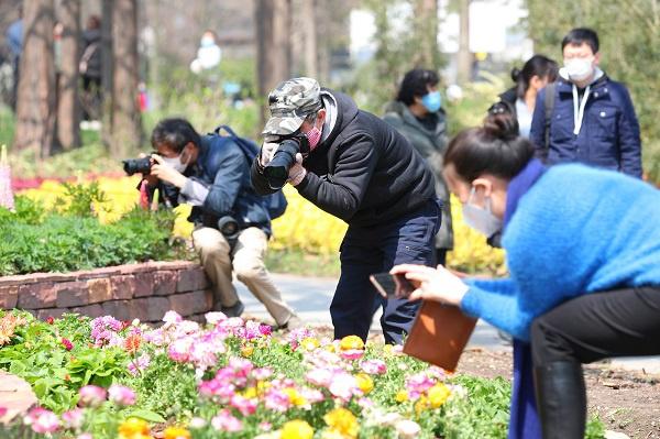 首个双休日接待游客近40万人次 上海今日再恢复开放83座公园图片