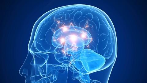 """马斯克的神秘公司Neuralink:连接人脑和 AI 的""""读心术"""""""