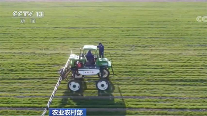 农业农村部:多措并举 力促春耕顺利进行图片
