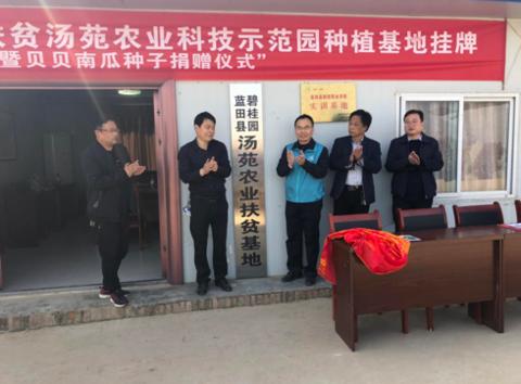 贝贝南瓜再起航 碧桂园陕西区域合作农业基地揭牌
