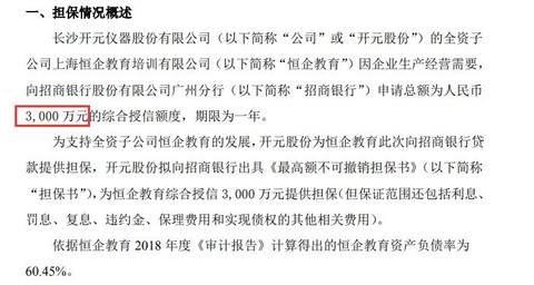 开元股份为全资子公司恒企教育向银行申请综合授信3000万元提供担保