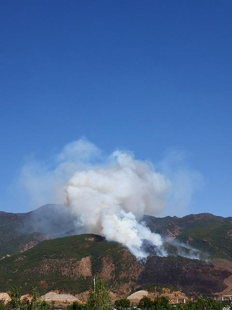 云南大理鹤庆突发森林火情 过火面积约15公顷图片