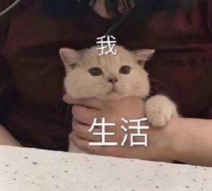 http://www.umeiwen.com/zhichang/1785281.html