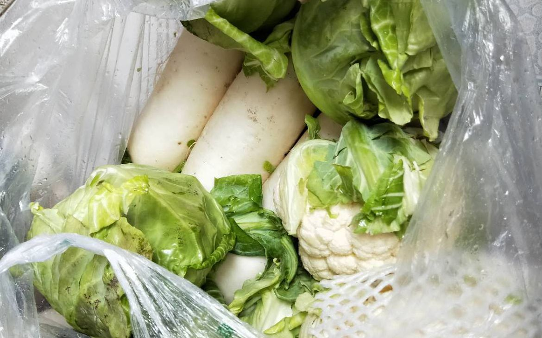 昌蓝冠蔬菜进城免费发每户领到20,蓝冠图片