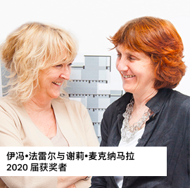 普利兹克建筑奖揭晓,爱尔兰女建筑师组合获奖图片