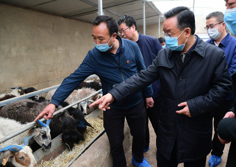 唐仁健在岷县调研脱贫攻坚等工作图片