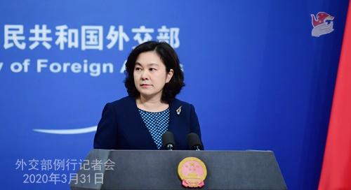2020年3月31日外交部发言人华春莹主持例行记者会图片