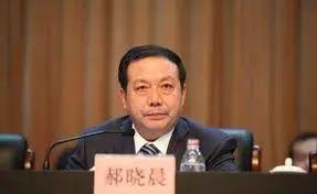 省委书记落马后被带走的两厅官 违纪违法详情公布图片