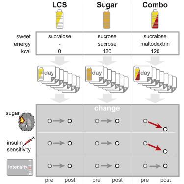 新研究将人造甜味剂的负面影响归咎到了碳水化合物头上